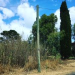 Sending Telstra a Telegraph (pole)